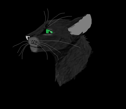 Hollyleaf MS Paint by TheRealBramblefire