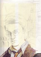 Harry Potter collage wip 2 by Mimitchki
