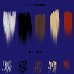 5 Hair Brushes for Gimp2 by jddndrbz