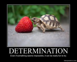Determination by The-PBG