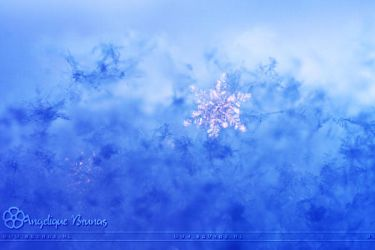 :: Cold surrounding :: by Liek