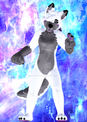 Fluffy SnowTheDerpyWolf (1/2) by InsanityAnimations