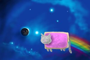 burned out nyan cat by SirNerdly