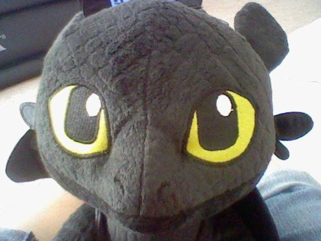 Toothless, one of my birthday presents! :D by Super-Flamin-Angel