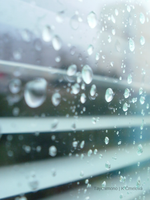 Rain on a window by Taychimono