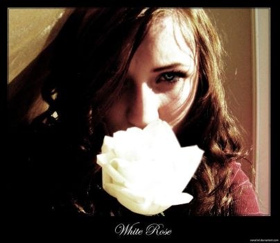 White Rose Photograph by Vanaliel
