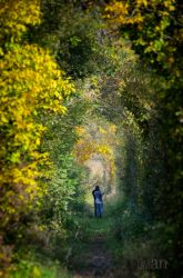 Tunnel of Love by Golby84