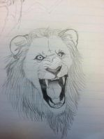Lion Sketch by Timetower