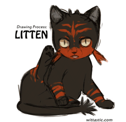 Drawing Process - Litten by Mewitti