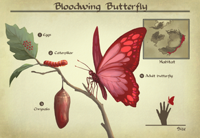 AA: Bloodwing Butterfly by number11train