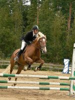 Showjumping 19 by wakedeadman
