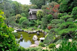 Japanese Garden House and Pond by AndySerrano