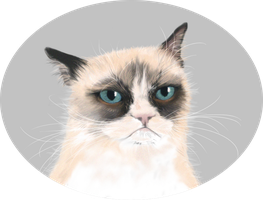 Tard the Grumpy cat by ErizoInfernal
