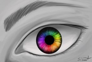 See Life In Colors by sisaat