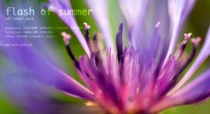 flash of summer wallpaper pack by Ythor