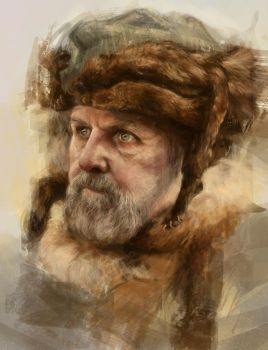 Viking by Aleitte