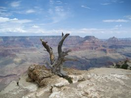 grand canyon by lmurphy06