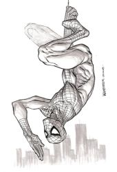 Spidermang by jeffwamester