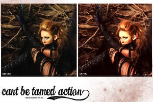 Cant be tamed action by touchingandkissing