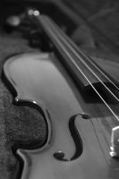 Violin in Black and White by AestheticIndulgence