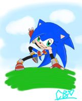SA2OAP contest: Sonii by SonicBionicle