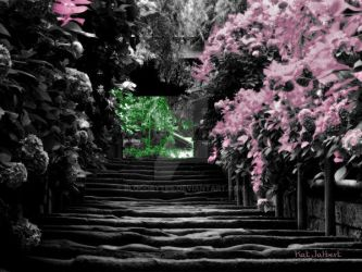 Japanese Garden Tinted by bloodbytes