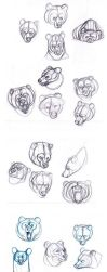 Bears sketches by sofmer