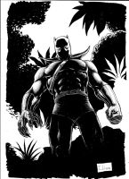 some Black Panther by Weball