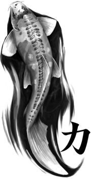 Koi Tattoo Design by stevegoad
