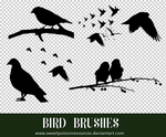 Bird Brushes 002 | Photoshop by sweetpoisonresources