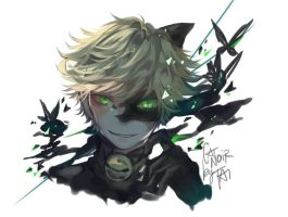 CHAT NOIR - MIRACULOUS LADYBUG  by tai-hato