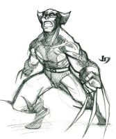 DSC - Wolverine by arsenalgearxx