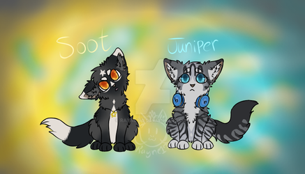 Soot and Juniper by rayne170
