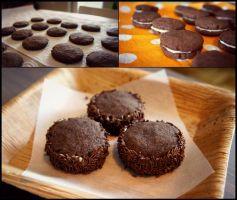 Chocolate Cookies by pandrina