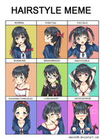 Hairstyle meme feat. Ame-chan by emarex96