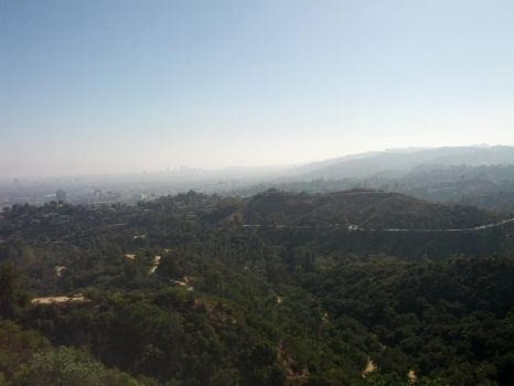 LA from the Observatory by iconocrash