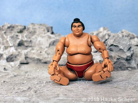 3D printed Sumo action figure pose C by hauke3000