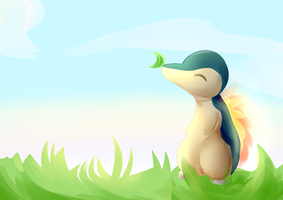 cyndaquil [request]