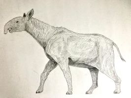 Indricotherium Sketch/Study by CameronDillon