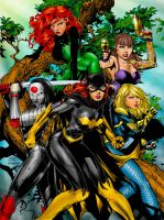 The Birds of Prey by J-Skipper