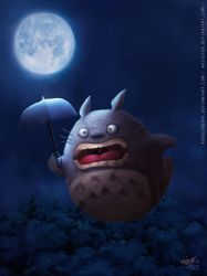 FYLD Totoro1 by WhiteFer