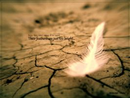 When they fly away... by DLeed