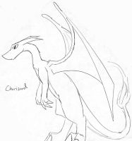 Pokemon- Charizard Staring-old by Talec