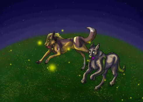 Chasing Stars - contest entry by casinuba