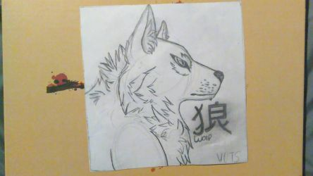 realisticish wolf drawing by Virtue-Of-The-Stars