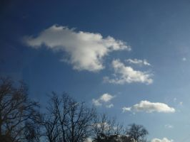 Blue December Sky from France by nicolapin