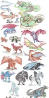 Dragon Pokemon