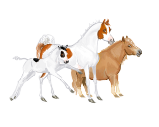 My dogs as horses by wideturn