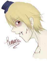 APH. Romania by The-Pocket-Llama