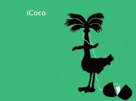 iCoco by Pentical